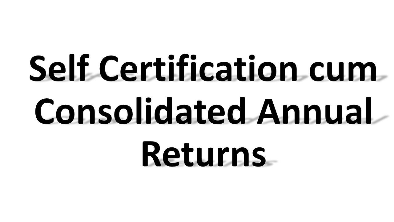 Self Certification cum Consolidated Annual Returns
