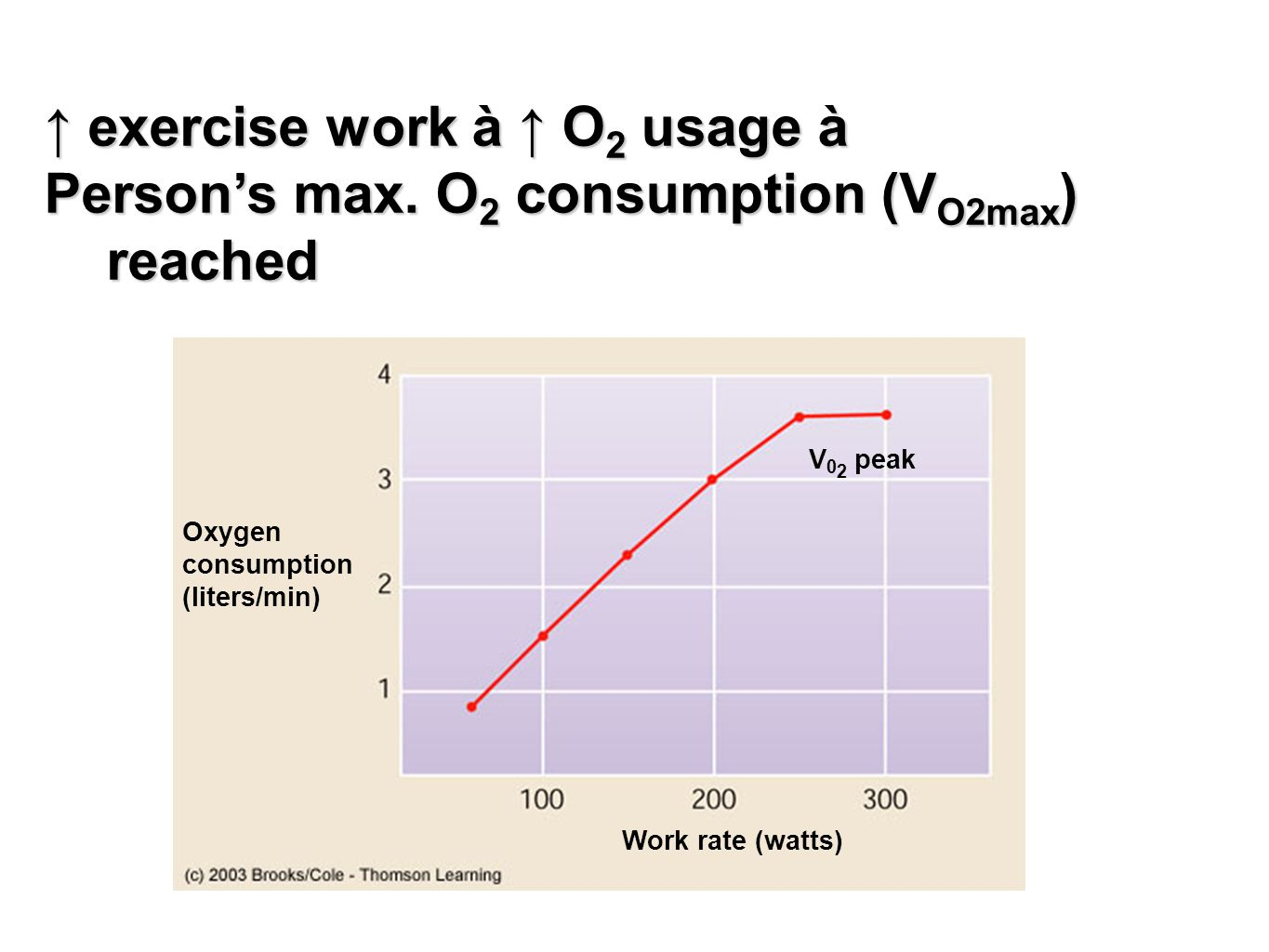 Oxygen consumption (liters/min) V 0 2 peak Work rate (watts) ↑ exercise work à ↑ O 2 usage à Person's max. O 2 consumption (V O2max ) reached