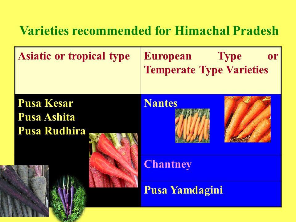 Varieties recommended for Himachal Pradesh Asiatic or tropical typeEuropean Type or Temperate Type Varieties Pusa Kesar Pusa Ashita Pusa Rudhira Nantes Chantney Pusa Yamdagini