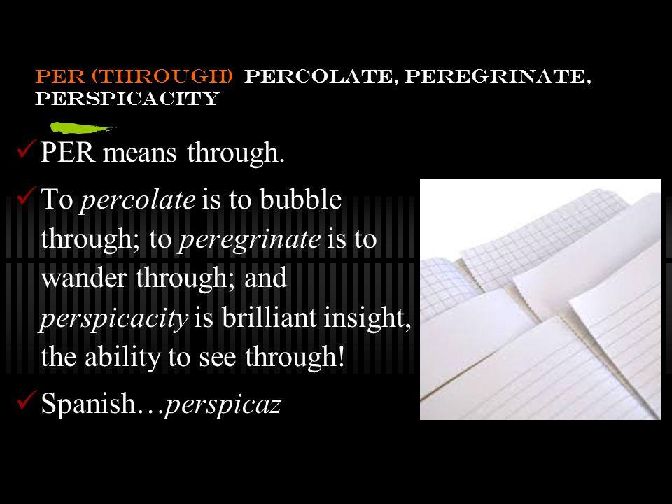 The Grammar of Vocabulary: perspicacity, a noun.