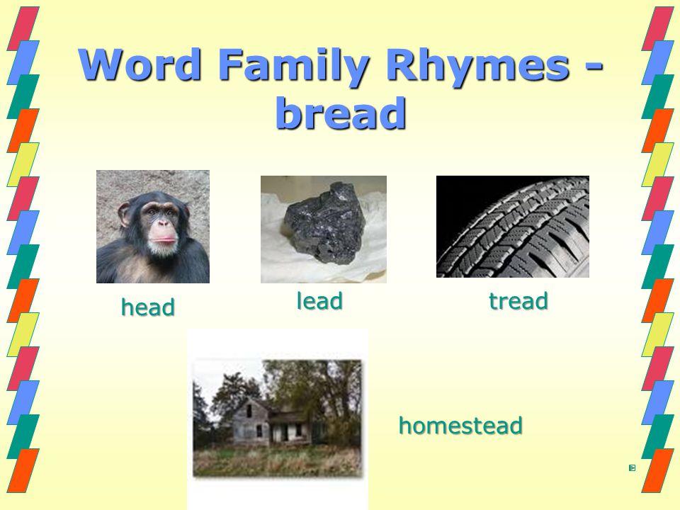 Word Family Rhymes - bread homestead homestead head lead lead tread tread