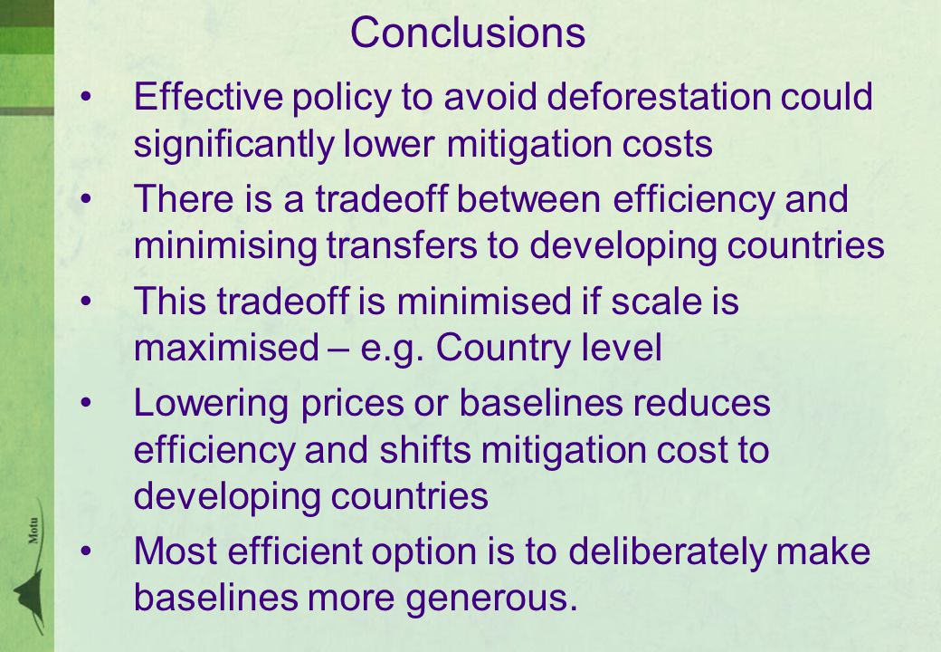 Conclusions Effective policy to avoid deforestation could significantly lower mitigation costs There is a tradeoff between efficiency and minimising transfers to developing countries This tradeoff is minimised if scale is maximised – e.g.