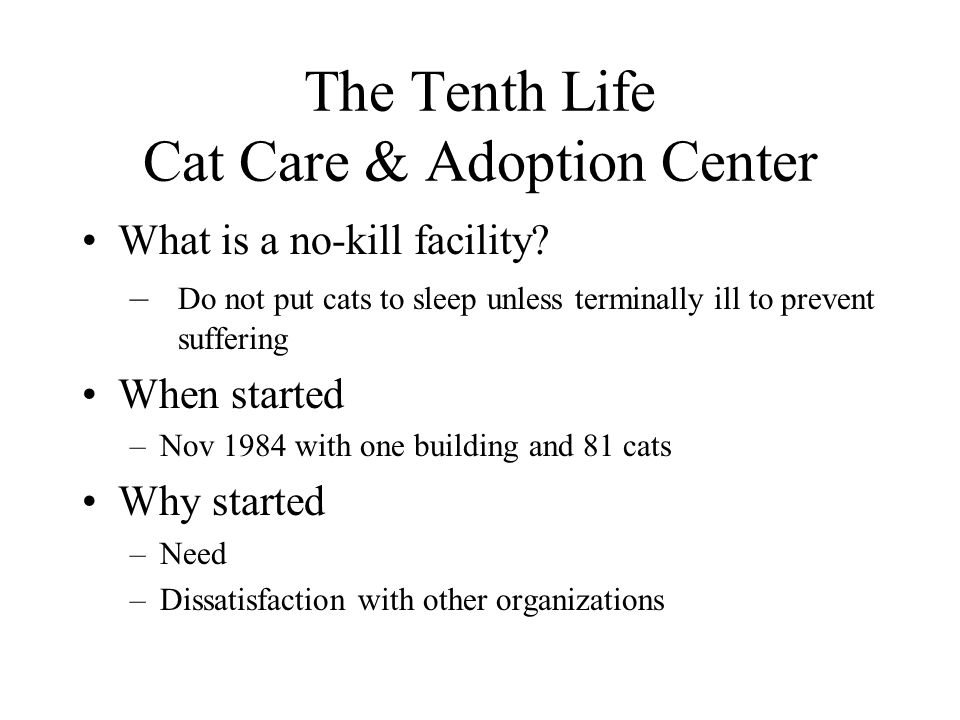 The Tenth Life Cat Care & Adoption Center What is a no-kill facility.