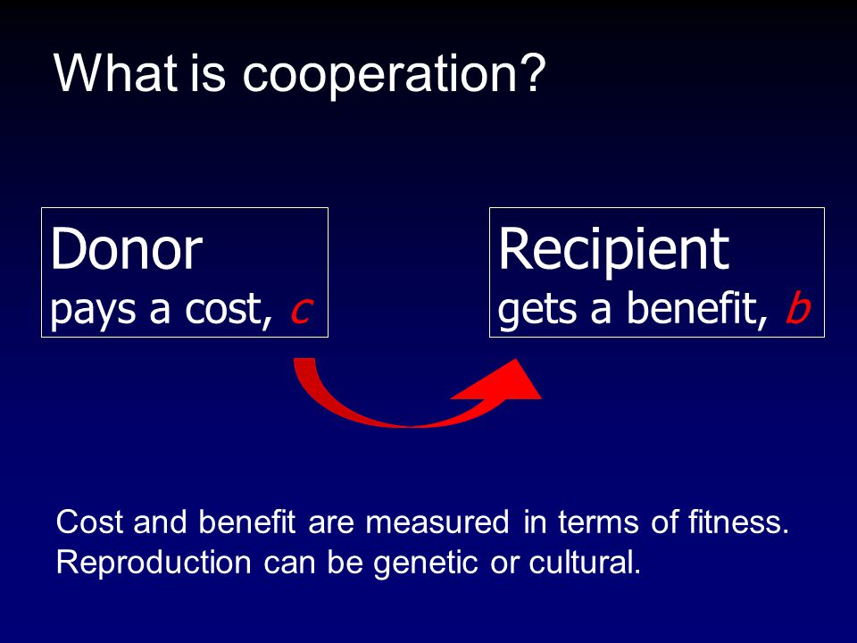 What is cooperation? Donor pays a cost, c Recipient gets a benefit, b Cost and benefit are measured in terms of fitness. Reproduction can be genetic o