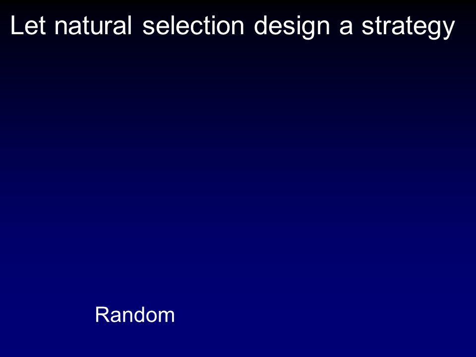 Let natural selection design a strategy Random