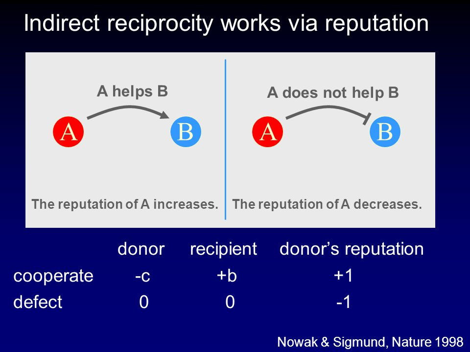 Indirect reciprocity works via reputation ABAB A does not help B The reputation of A increases. The reputation of A decreases. A helps B donor recipie