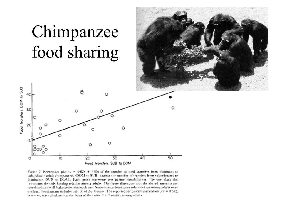 Chimpanzee food sharing