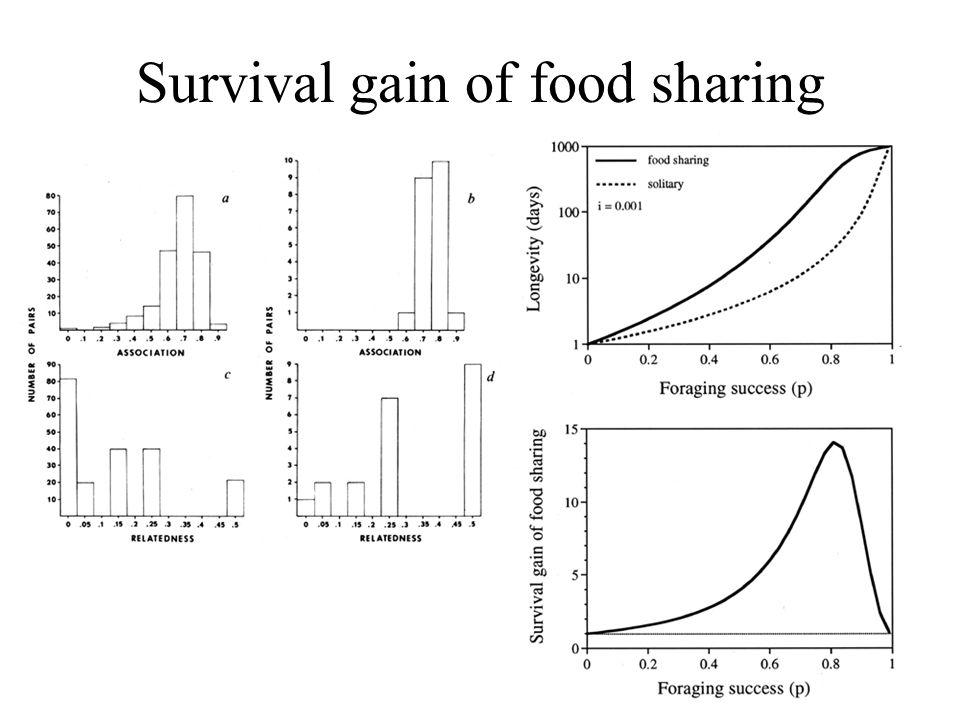Survival gain of food sharing