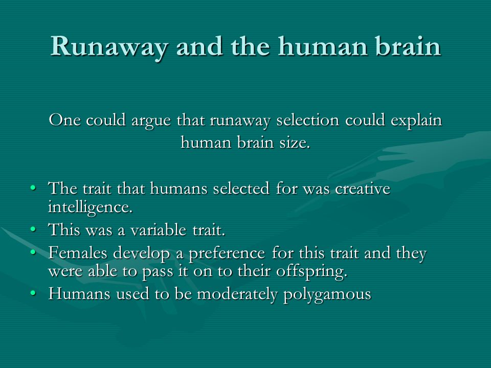 Runaway and the human brain One could argue that runaway selection could explain human brain size.