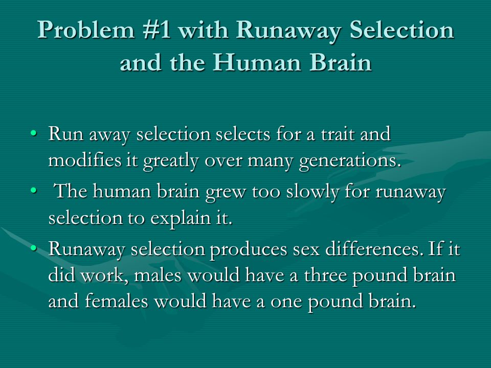 Problem #1 with Runaway Selection and the Human Brain Run away selection selects for a trait and modifies it greatly over many generations.Run away selection selects for a trait and modifies it greatly over many generations.