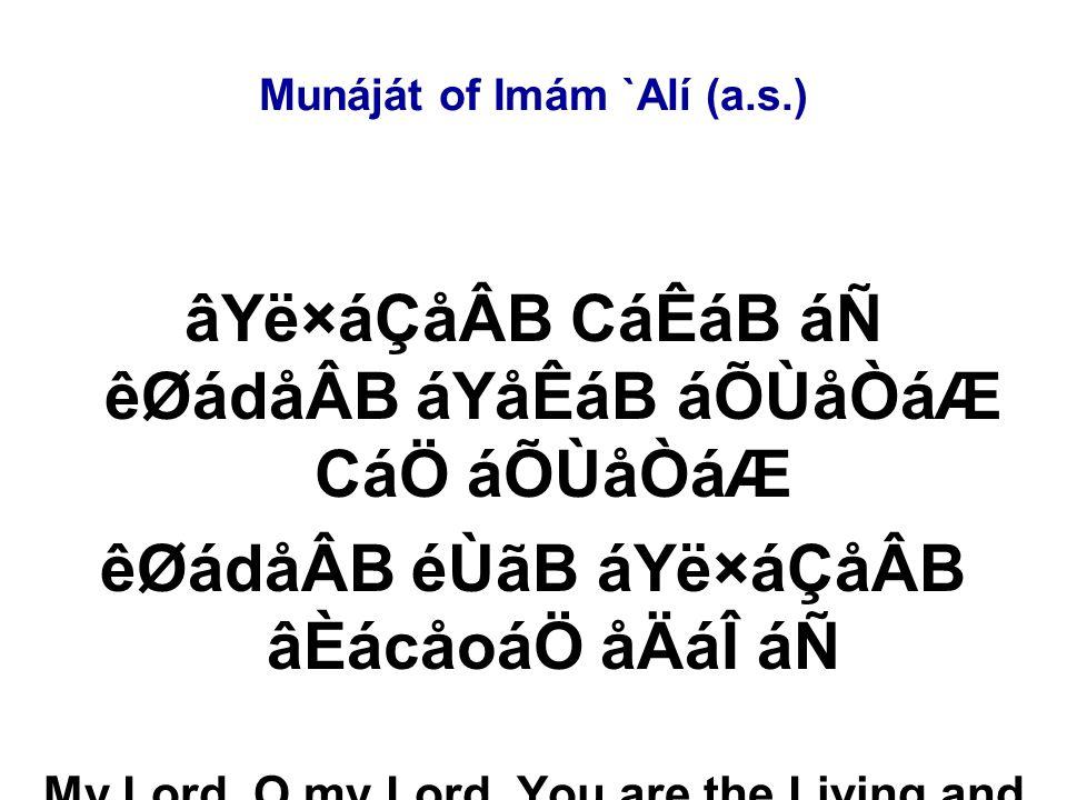Munáját of Imám `Alí (a.s.) âYë×áÇåÂB CáÊáB áÑ êØádåÂB áYåÊáB áÕÙåÒáÆ CáÖ áÕÙåÒáÆ êØádåÂB éÙãB áYë×áÇåÂB âÈácåoáÖ åÄáÎ áÑ My Lord, O my Lord, You are the Living and I am the dead.
