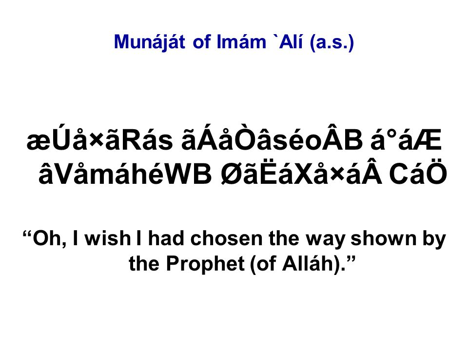 Munáját of Imám `Alí (a.s.) æÚå×ãRás ãÁåÒâséoÂB á°áÆ âVåmáhéWB ØãËáXå×á CáÖ Oh, I wish I had chosen the way shown by the Prophet (of Alláh).