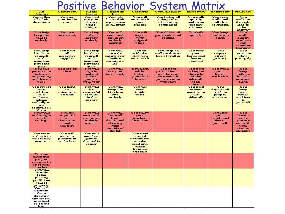 Positive Behavior System Matrix