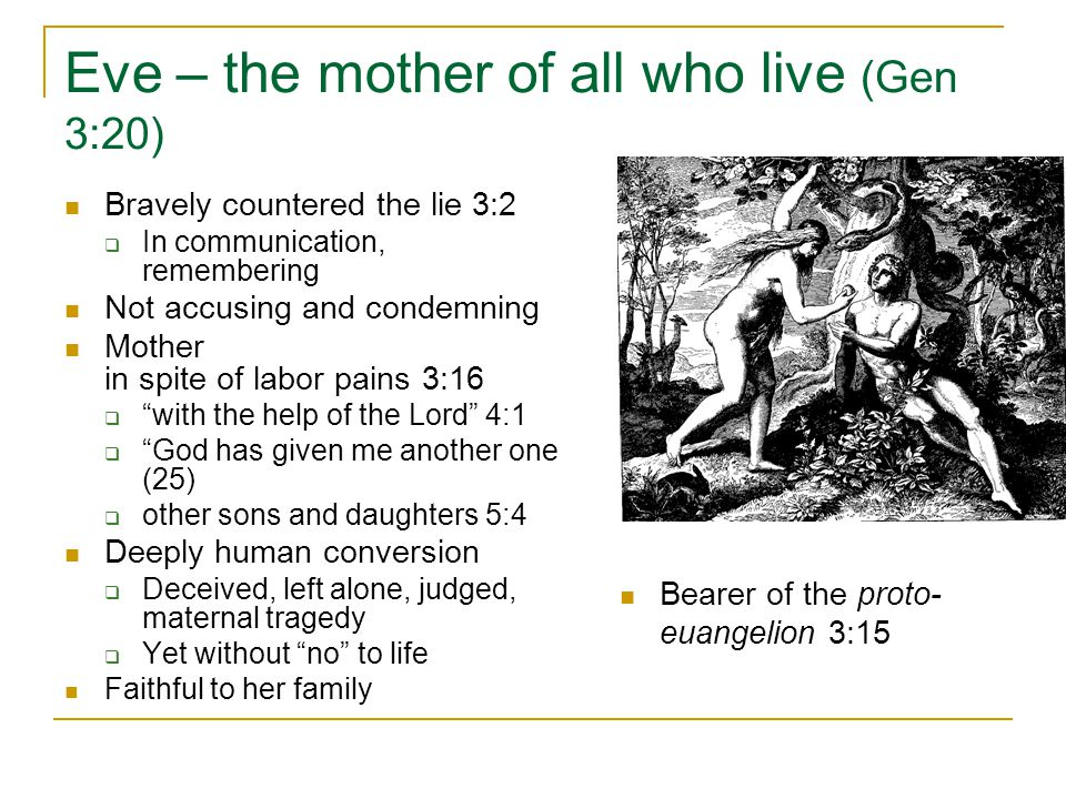Eve – the mother of all who live (Gen 3:20) Bravely countered the lie 3:2  In communication, remembering Not accusing and condemning Mother in spite