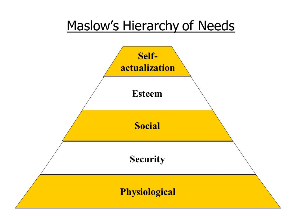Maslow's Hierarchy of Needs Self- actualization Esteem Social Security Physiological