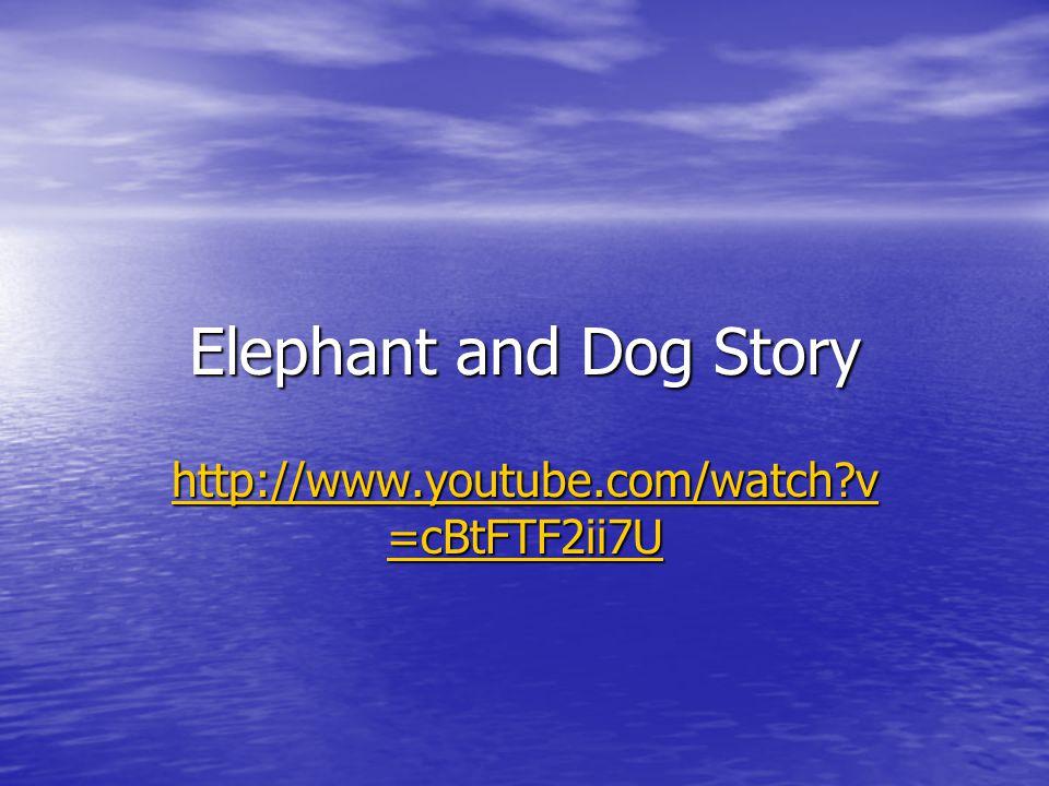 Elephant and Dog Story http://www.youtube.com/watch?v =cBtFTF2ii7U http://www.youtube.com/watch?v =cBtFTF2ii7U