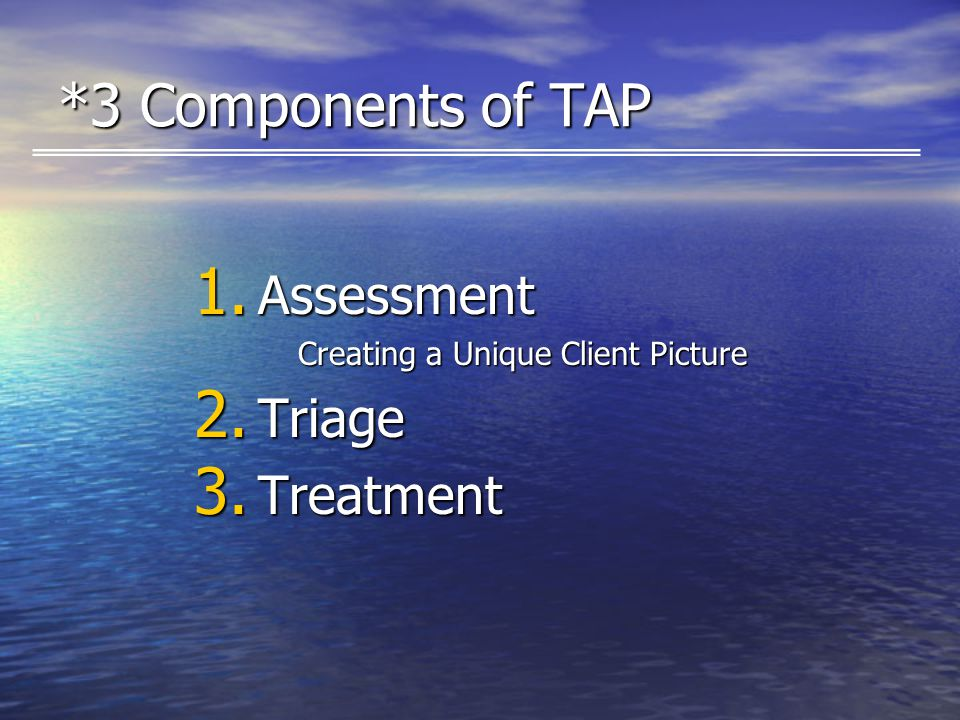 *3 Components of TAP 1. Assessment Creating a Unique Client Picture 2. Triage 3. Treatment