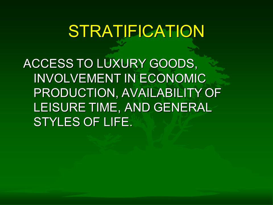 STRATIFICATION ACCESS TO LUXURY GOODS, INVOLVEMENT IN ECONOMIC PRODUCTION, AVAILABILITY OF LEISURE TIME, AND GENERAL STYLES OF LIFE.