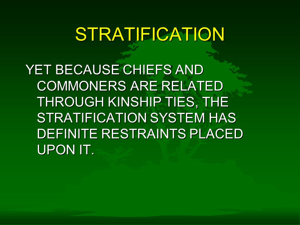STRATIFICATION YET BECAUSE CHIEFS AND COMMONERS ARE RELATED THROUGH KINSHIP TIES, THE STRATIFICATION SYSTEM HAS DEFINITE RESTRAINTS PLACED UPON IT.
