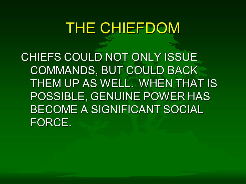 THE CHIEFDOM CHIEFS COULD NOT ONLY ISSUE COMMANDS, BUT COULD BACK THEM UP AS WELL.