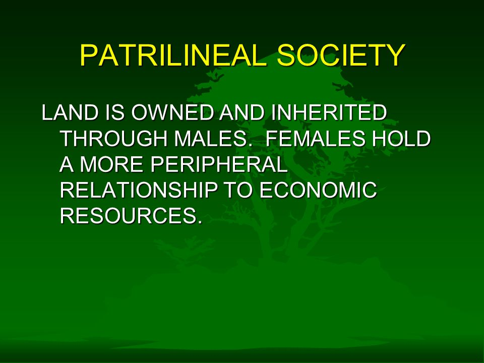 PATRILINEAL SOCIETY LAND IS OWNED AND INHERITED THROUGH MALES.