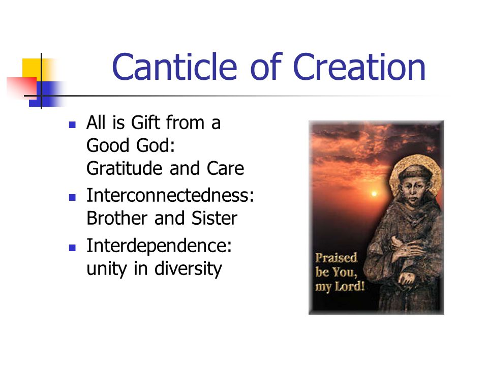 Canticle of Creation All is Gift from a Good God: Gratitude and Care Interconnectedness: Brother and Sister Interdependence: unity in diversity