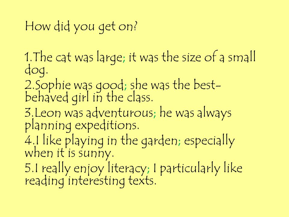 How did you get on? 1.The cat was large; it was the size of a small dog. 2.Sophie was good; she was the best- behaved girl in the class. 3.Leon was ad