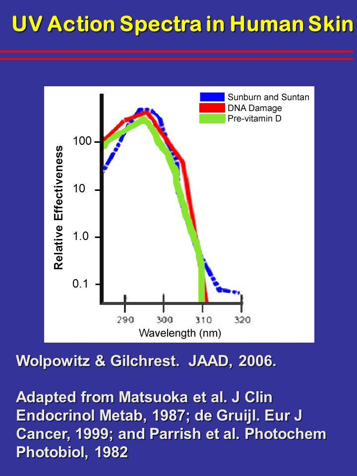 UV Action Spectra in Human Skin Wolpowitz & Gilchrest.