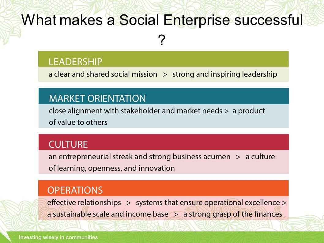 What makes a Social Enterprise successful ?