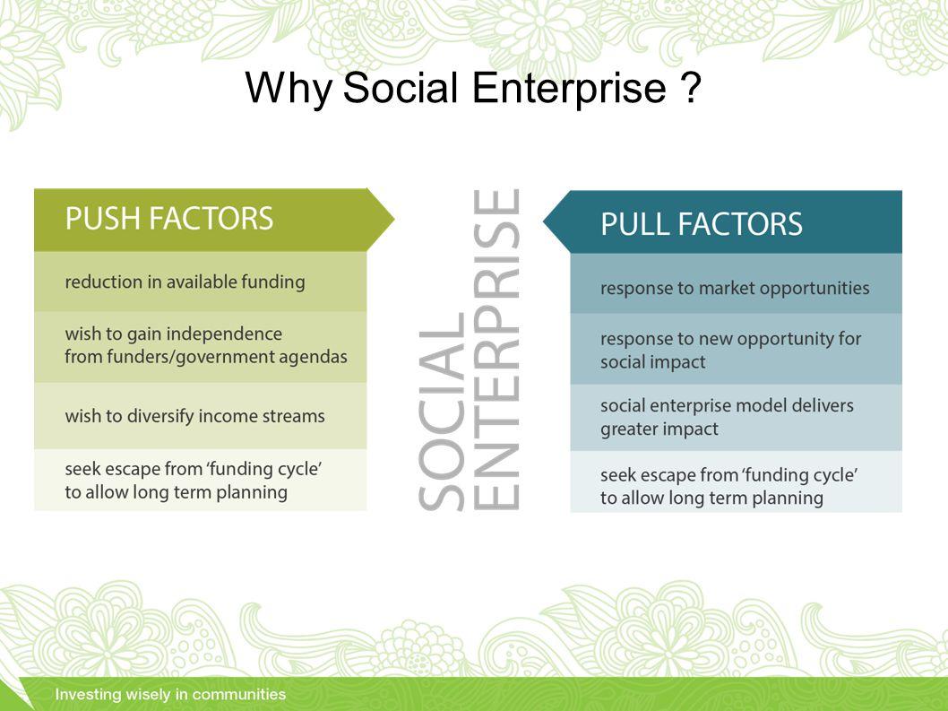 Why Social Enterprise ?