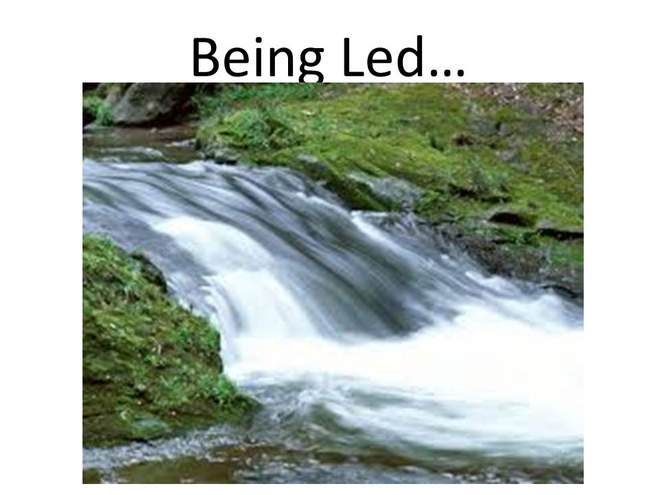 Being Led…