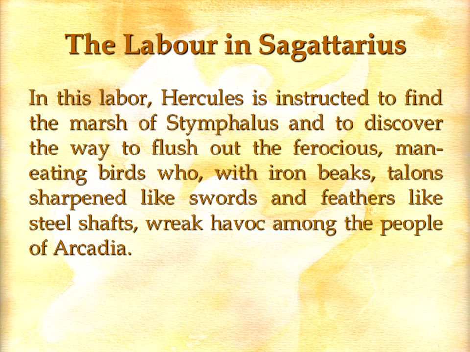 The Labour in Sagattarius In this labor, Hercules is instructed to find the marsh of Stymphalus and to discover the way to flush out the ferocious, man- eating birds who, with iron beaks, talons sharpened like swords and feathers like steel shafts, wreak havoc among the people of Arcadia.