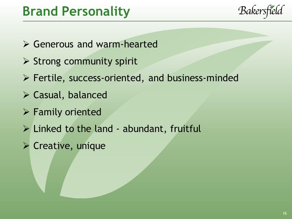 15 Brand Personality  Generous and warm-hearted  Strong community spirit  Fertile, success-oriented, and business-minded  Casual, balanced  Family oriented  Linked to the land - abundant, fruitful  Creative, unique