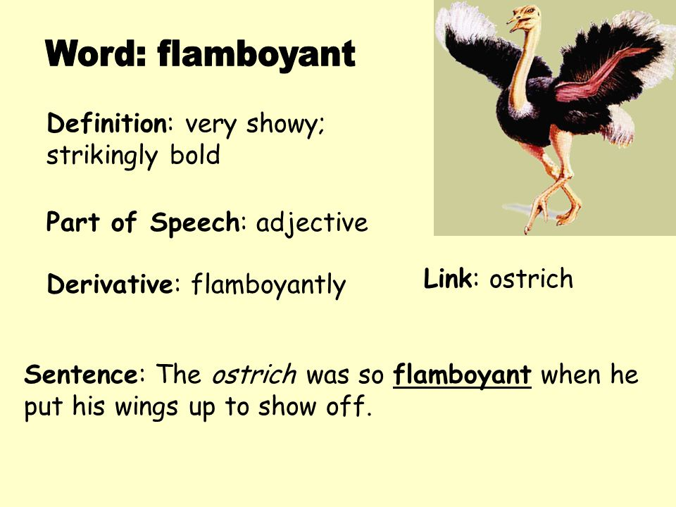 Definition: very showy; strikingly bold Derivative: flamboyantly Sentence: The ostrich was so flamboyant when he put his wings up to show off. Part of