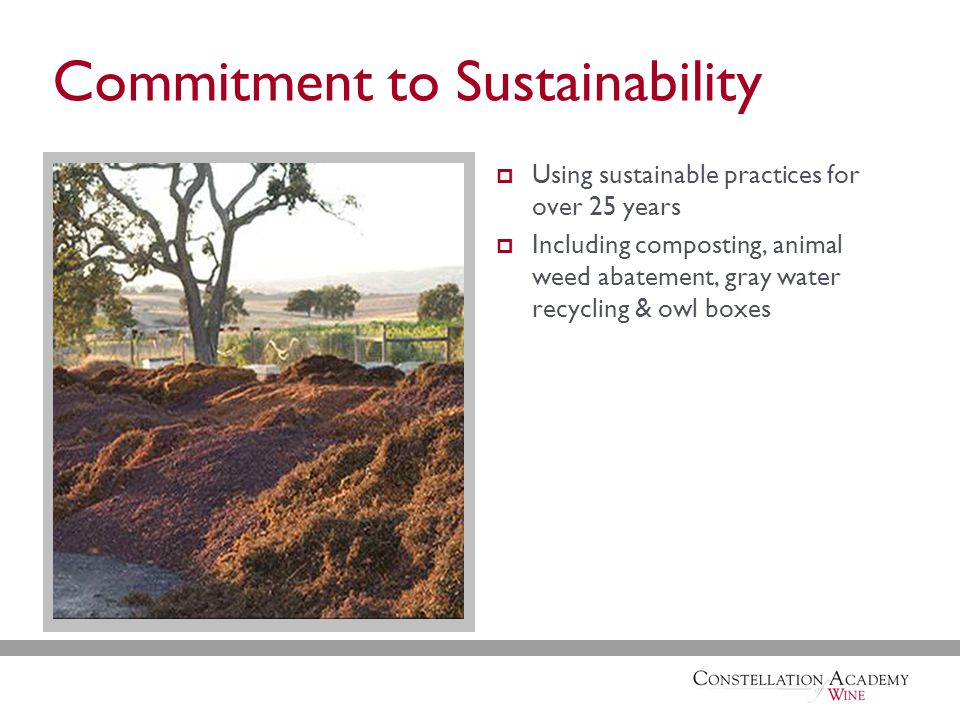 Commitment to Sustainability  Using sustainable practices for over 25 years  Including composting, animal weed abatement, gray water recycling & owl boxes