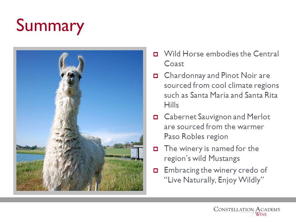 Summary  Wild Horse embodies the Central Coast  Chardonnay and Pinot Noir are sourced from cool climate regions such as Santa Maria and Santa Rita Hills  Cabernet Sauvignon and Merlot are sourced from the warmer Paso Robles region  The winery is named for the region's wild Mustangs  Embracing the winery credo of Live Naturally, Enjoy Wildly