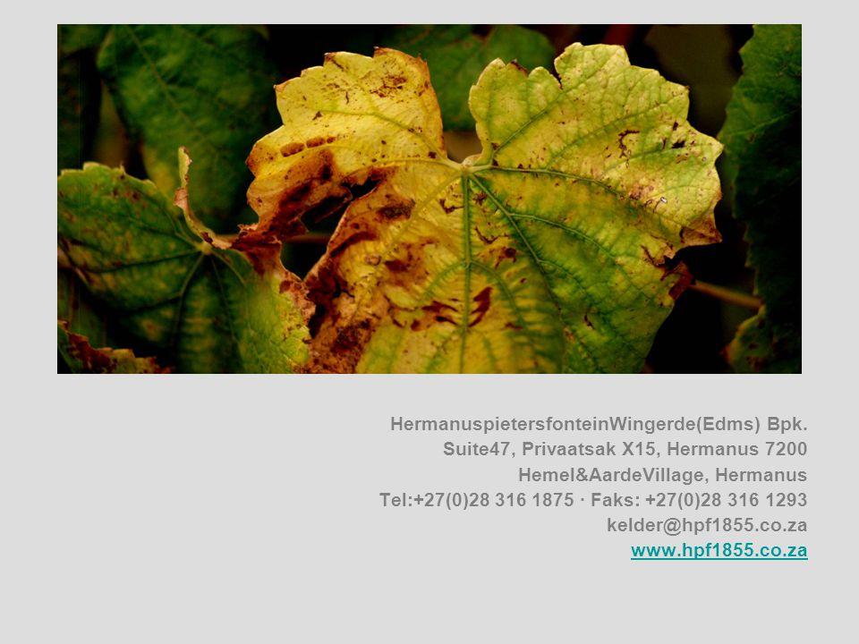 HermanuspietersfonteinWingerde(Edms) Bpk.