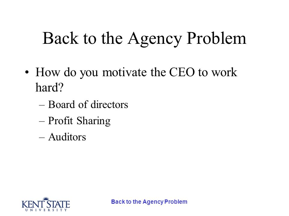 How do you motivate the CEO to work hard –Board of directors –Profit Sharing –Auditors