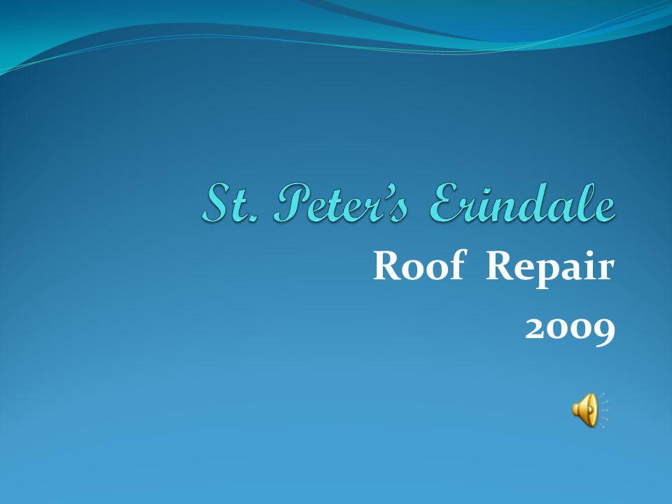 Roof Repair 2009