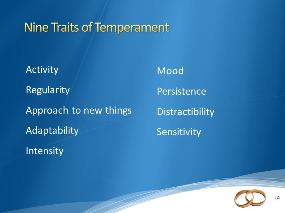 19 Activity Regularity Approach to new things Adaptability Intensity Mood Persistence Distractibility Sensitivity