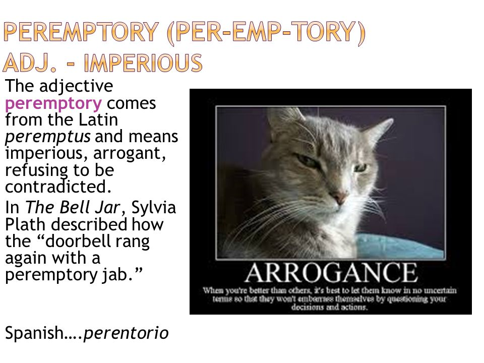  Oblique: indirect or slanting  Pensive: thoughtful  Magnanimous: generous  Importune: to pester  Peremptory: imperious