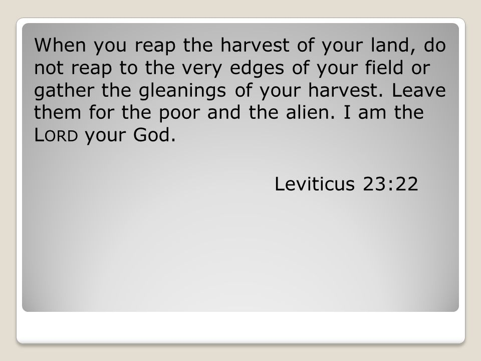 When you reap the harvest of your land, do not reap to the very edges of your field or gather the gleanings of your harvest. Leave them for the poor a