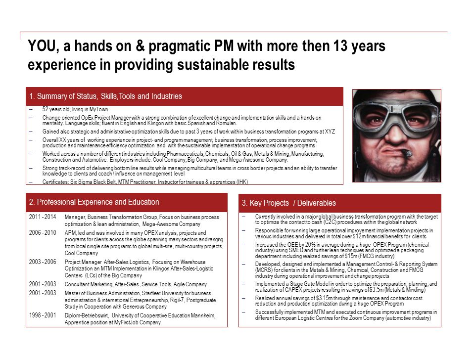 YOU, a hands on & pragmatic PM with more then 13 years experience in providing sustainable results – Currently involved in a major global business tra