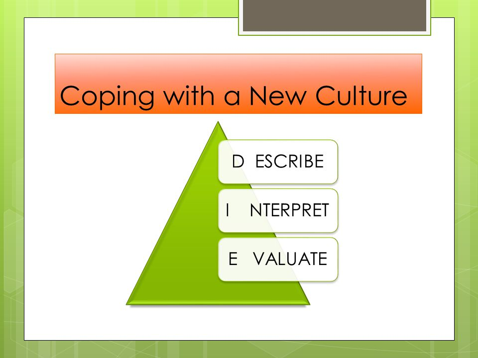 Coping with a New Culture D ESCRIBEI NTERPRETE VALUATE