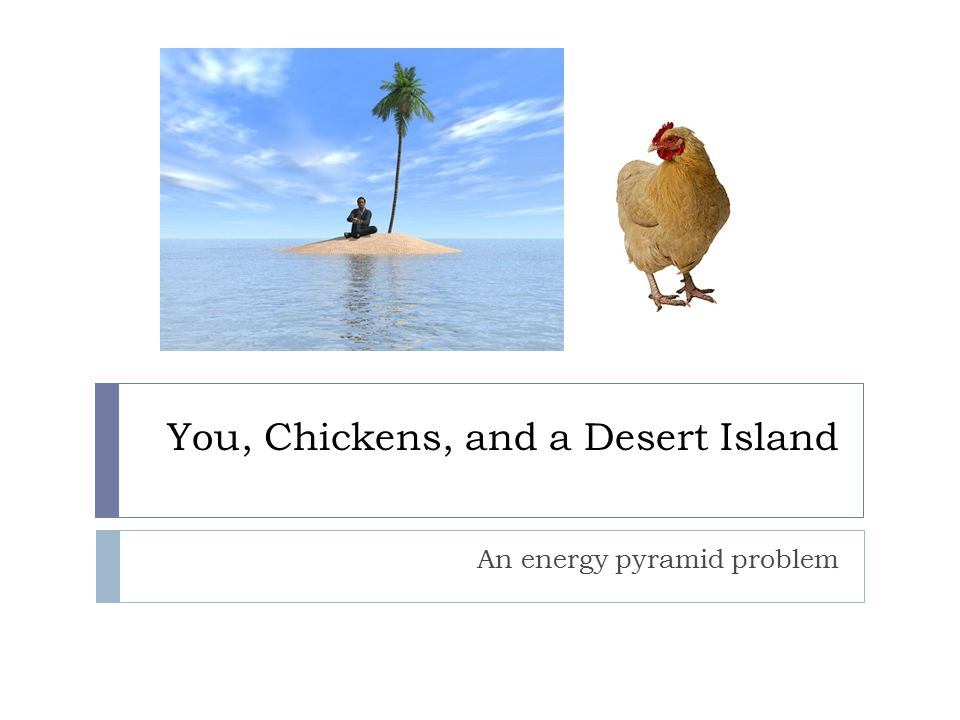 You, Chickens, and a Desert Island An energy pyramid problem