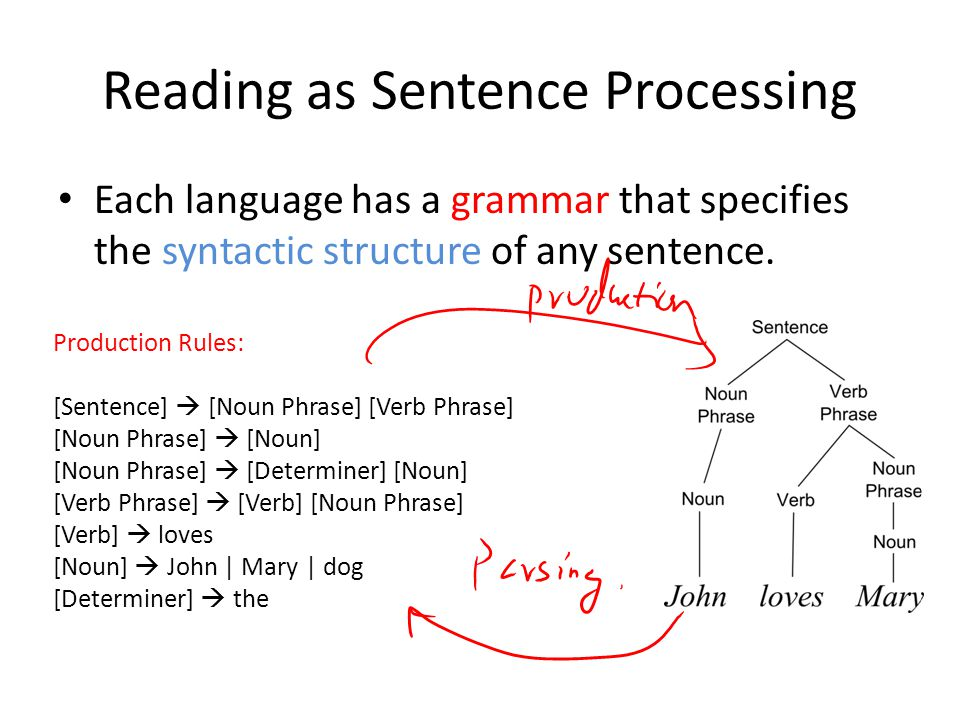 Reading as Sentence Processing Each language has a grammar that specifies the syntactic structure of any sentence.