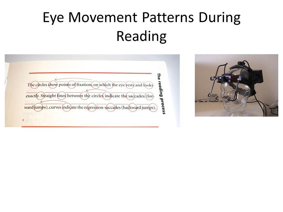 Eye Movement Patterns During Reading