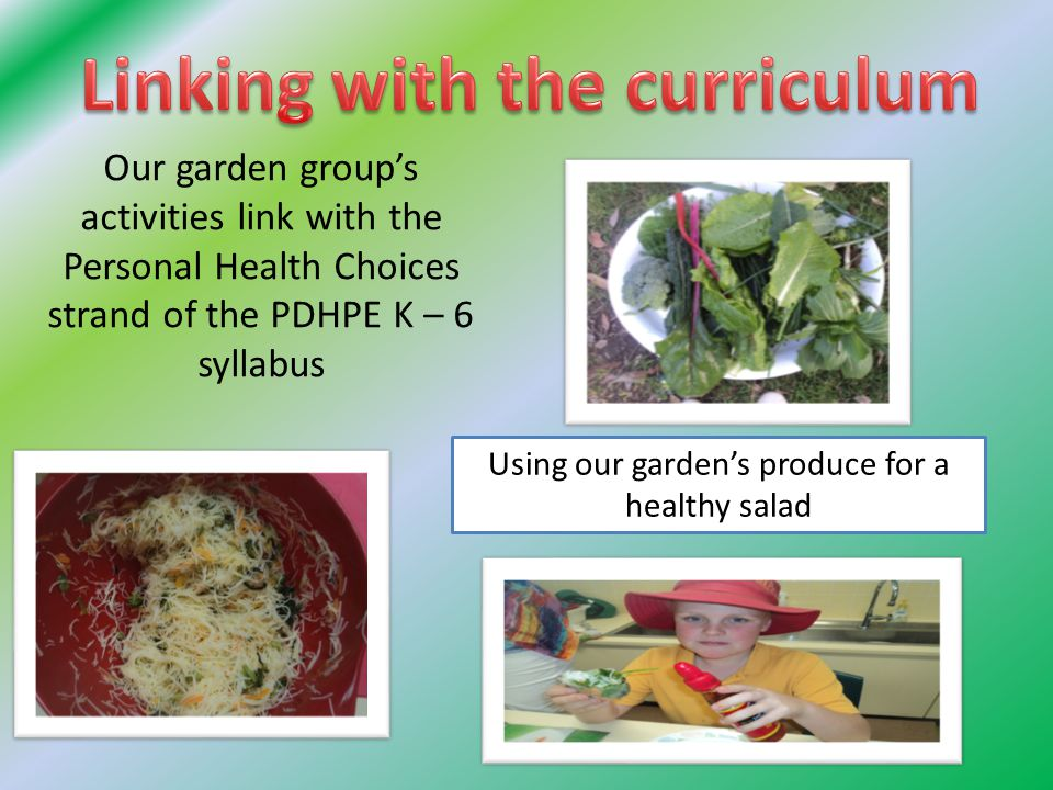 Our garden group's activities link with the Personal Health Choices strand of the PDHPE K – 6 syllabus Using our garden's produce for a healthy salad