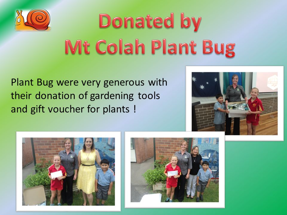 Plant Bug were very generous with their donation of gardening tools and gift voucher for plants !