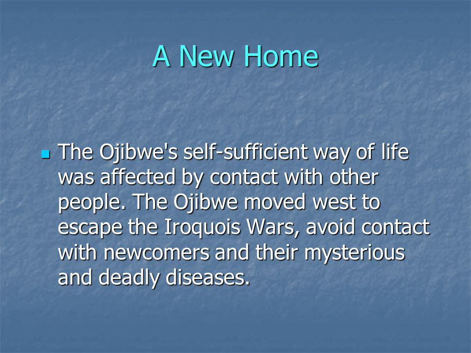 A New Home The Ojibwe s self-sufficient way of life was affected by contact with other people.